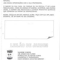 CadAtivpg0199.jpg