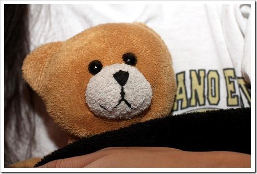little teddy IMG_4383