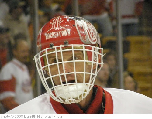 '080202 red wings at bruins (371)' photo (c) 2008, Dan4th Nicholas - license: https://creativecommons.org/licenses/by/2.0/