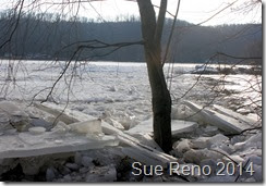 Susquehann River ice jam, by Sue Reno, Image 4