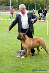 20100513-Bullmastiff-Clubmatch_31154.jpg