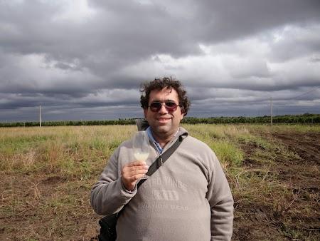 Basarabia - Drumul Vinului. Tulburel de Moldova