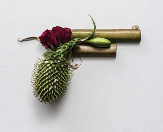 Armas de plantas (3)