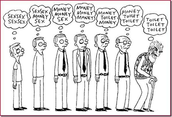 humor evolucion (10)