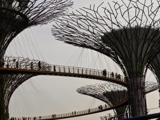 The 'trees' in the Gardens by the Bay