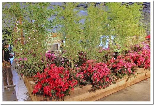120321_SF_Flower Garden_Show_227