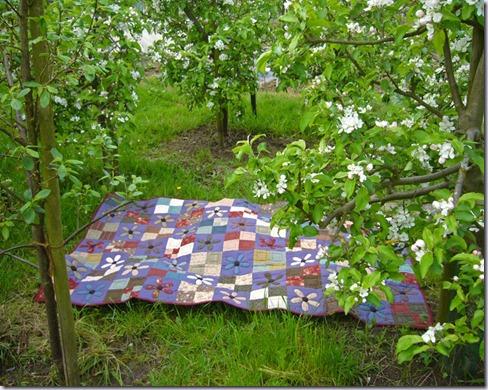 quilt-in-boomgaard-2