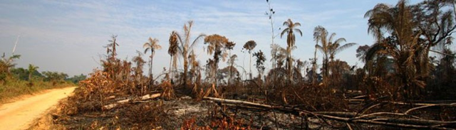 Deforestation in the Brazilian Amazon. The country is under pressure to expand agricultural production, yet deforestation could reduce yields, according to a study from the Brazilian federal universities of Viçosa, Pampa, Minas Gerais, and the Woods Hole Research Center in the United States. Photo: Leonardo F. Freitas / flickr