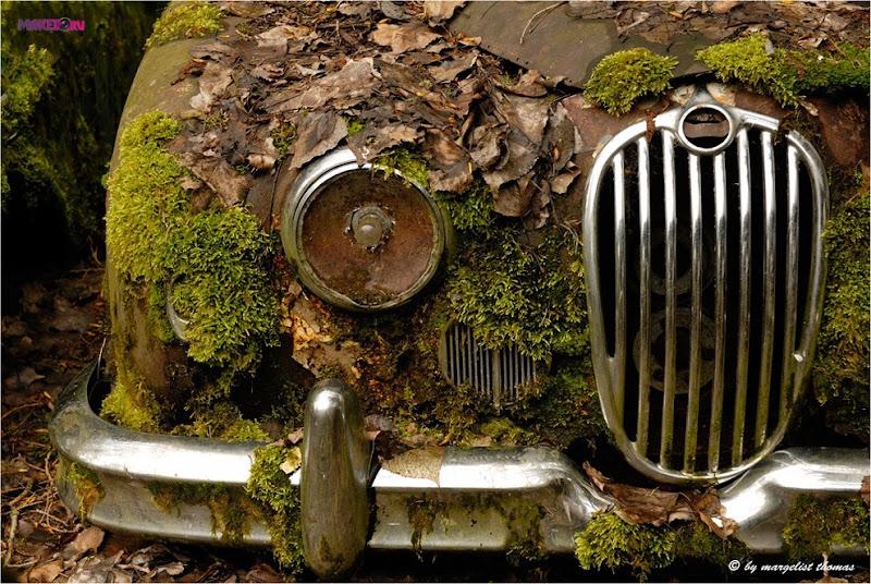 cars_012.jpg