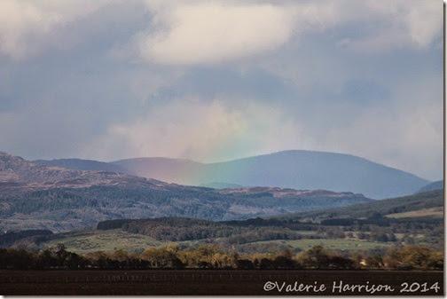 25-rainbow