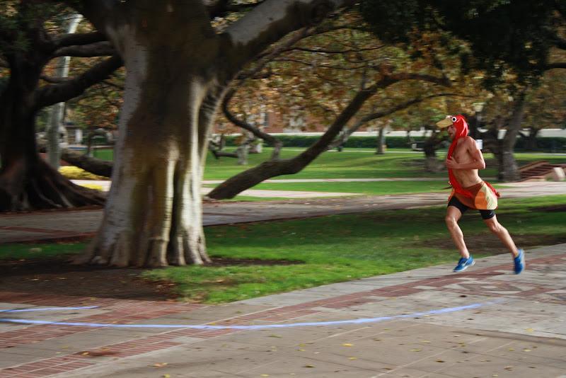 2012 Chase the Turkey 5K - 2012-11-17%252525252021.09.05-1.jpg
