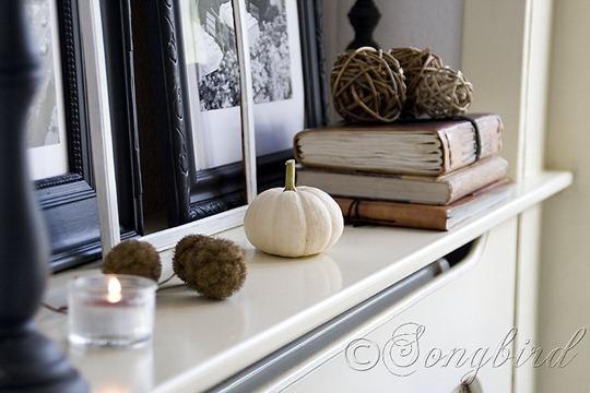 Small White Pumpkin Vignette