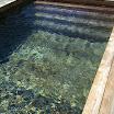 piscine bois modern pool 9.jpg