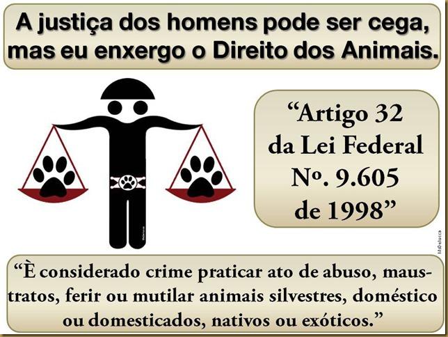 justica-animais