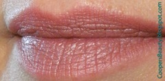 Vincent Longo Dual Lip Pencil Lavender Lite (2)