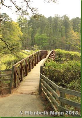 Scenic view of bridge