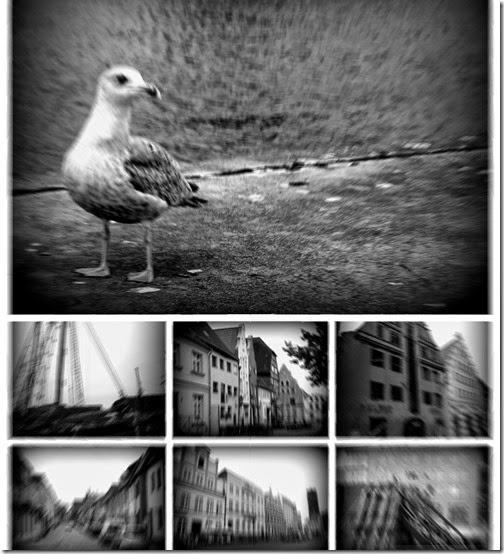300 Fotos