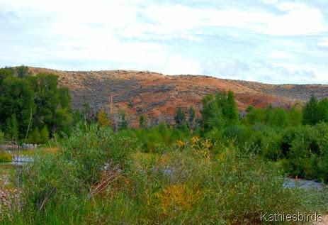 10. foothills-kab