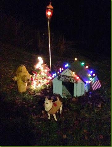 higgins Christmas dog house