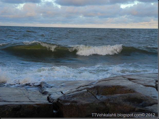 kallo tyrsky matka kuvia 051