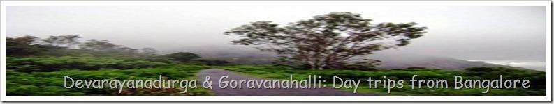 Devarayanadurga & Goravanahalli: Day trips from Bangalore