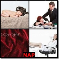 NAP- 4 Pics 1 Word Answers 3 Letters