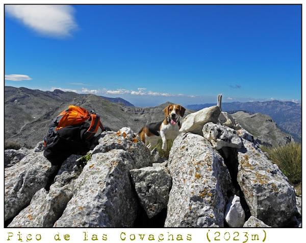 19 - pico de las covachas.jpg