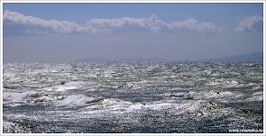 Sea_.jpg