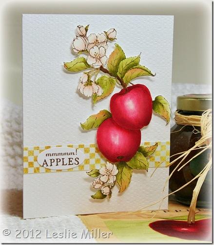 AppleCardMay2012