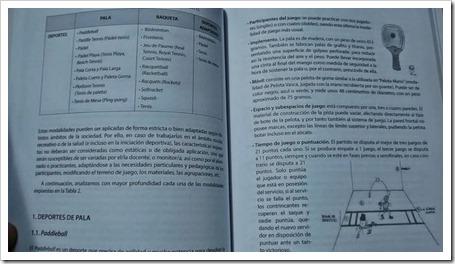 """La estructura de """"Los deportes de raqueta"""" editado por INDE viene dada por los siete capítulos expuestos a continuación"""