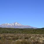 Nouvelle Zélande - Nord - _DSC0046.JPG