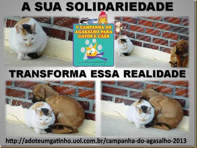 5_campanha_agasalho