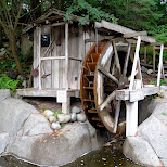 waterwheel at the Capilano Suspension Bridge in North Vancouver, British Columbia, Canada