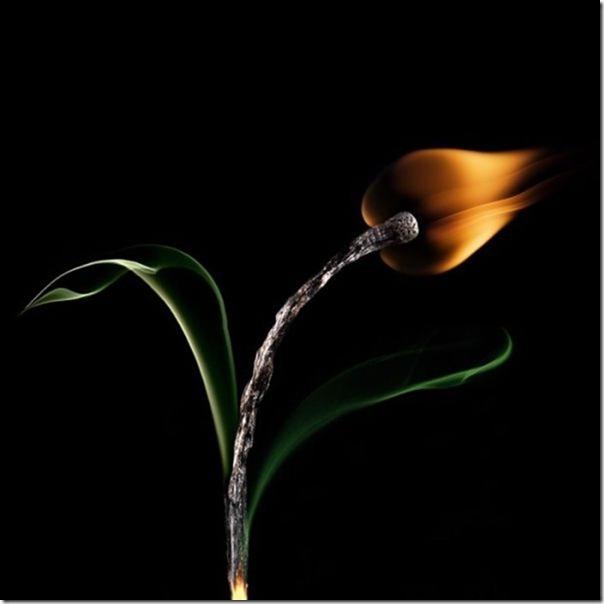 matchstick-masterpiece-art-15