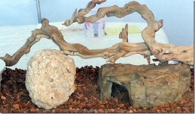 Aquarium side 6-25-2012 2-14-22 PM 3523x2055