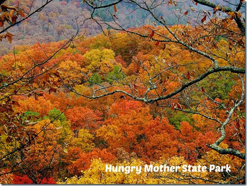 hungry mother sp
