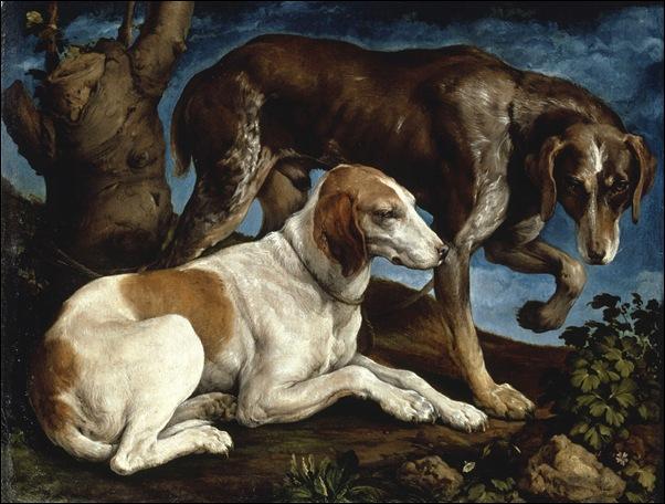Jacopo Bassano, Les deux chiens de chasse du comte Zantani 1548