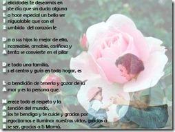 fases largas dia de la madre (9)
