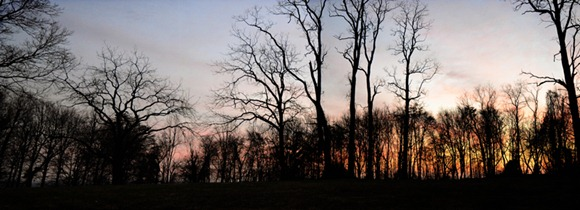Untitled_Panorama1 copy 2