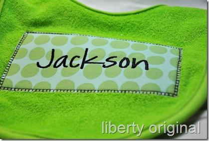 Jackson bib close