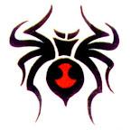 spiders-08.jpg