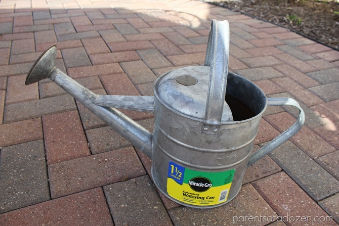 Spray painting watering can  to add color