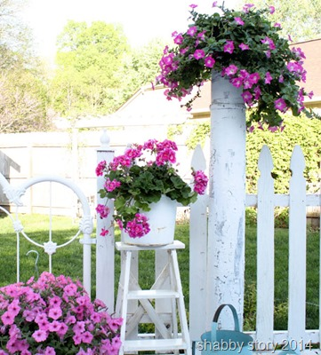 deck-flowers shabby story