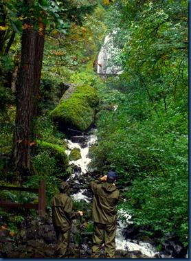 Wahkeena Falls (3)