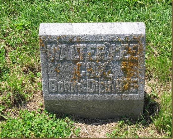 Walter Lee Cox