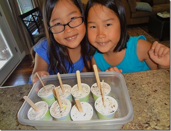 Ice Cream Pops 029