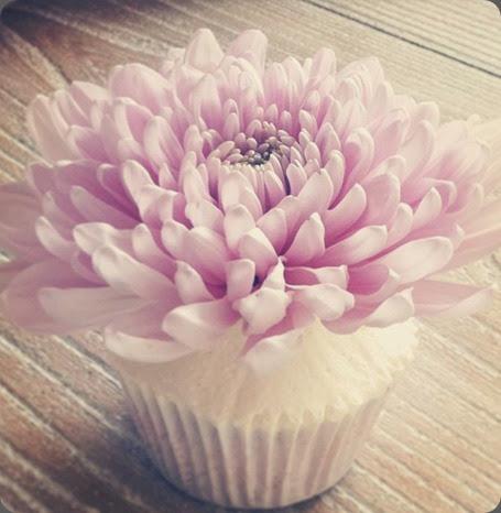 mums 249157_574280215963218_1074978224_n philippa craddock flowers