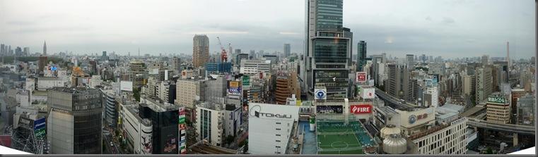 Tokyo panorama 1 small