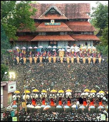 Vadakumnathan Temple Elephants for Pooram