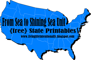 From Sea to Shining Sea Unit